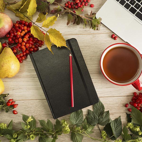 blog fruite laptop